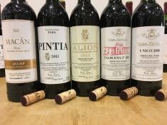 Vega-Sicilia-wine-tasting