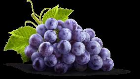 grapes--promo